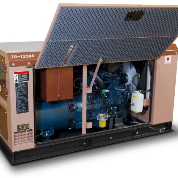 Дизельный генератор TOYO TG-12SBS10
